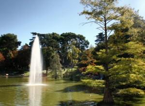 fotos-madrid-parque-retiro-palacio-cristal-008